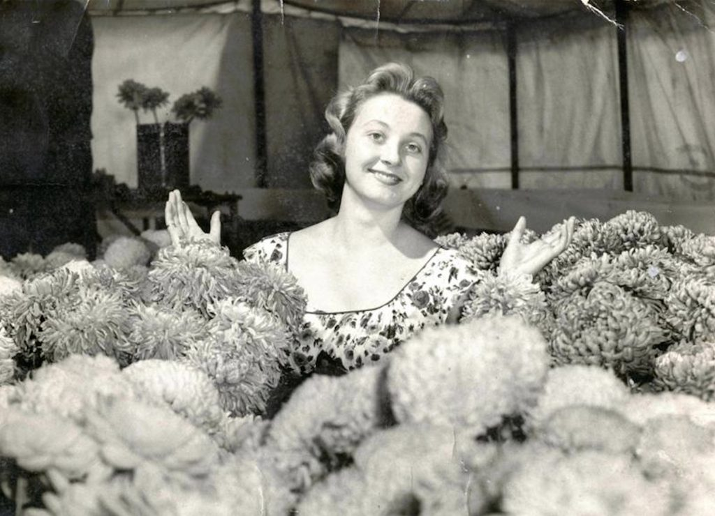 A lovely photograph of Josie Johnson standing amongst the blooms in the Floral Display Tent at one of the Horticultural Shows in the late 1950s.